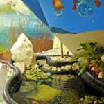 Oczko wodne w sali dydaktycznej, działającego od 2009 r. Centrum Edukacji Ekologicznej (fot. JZWiK)